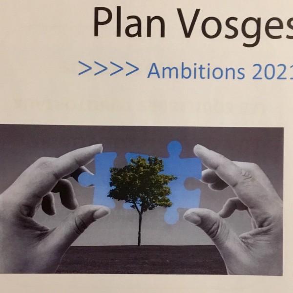 Plan Vosges: Ambition 2021