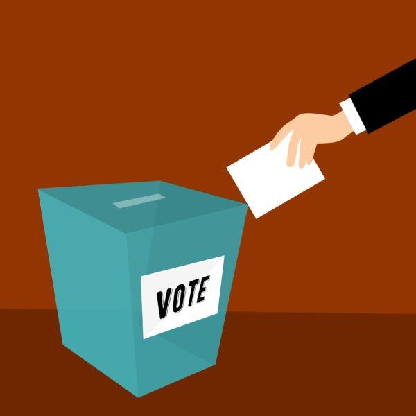 Élections régionales et départementales : ce sera les 13 et 20 juin 2021